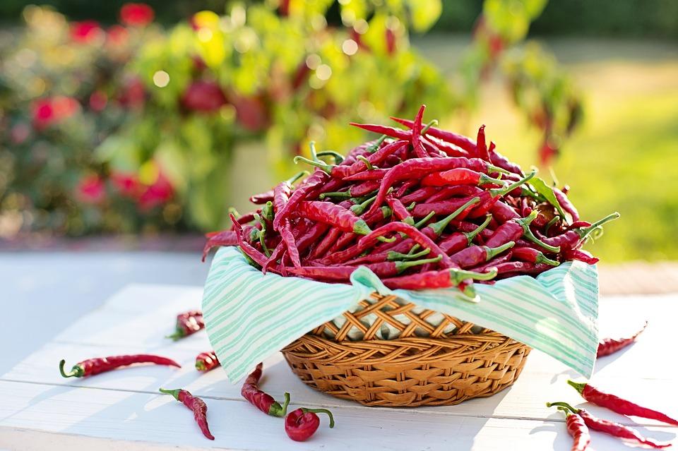 Maďarské papriky